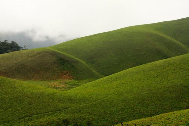 Munnar-Valparai-Ooty Tour Package